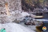 Suwannee River10.jpg