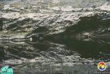 Suwannee Rv Outcrop 6.jpg