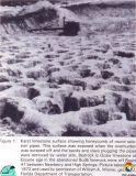 Ocala Karst 1972.jpg