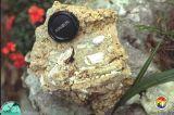 Sinkhole fill with bone fragments Citrus Co.jpg