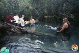 Springs Crew.jpg