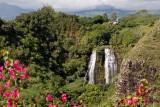Hawaii: Day 7: Kauai