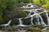 Tyler Forks Cascades