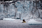 Kayaking among the Icebergs