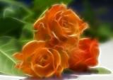 three in orange