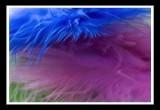 pink n blue
