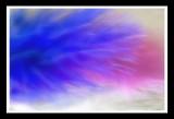 pink n blue with fractalius plugin