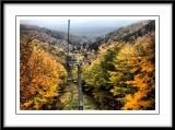 beautiful Autumn scene...