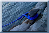 the blue rope...