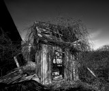 An old scary outhouse