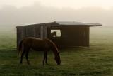 The Broadwall farm.