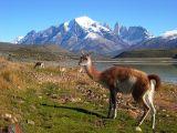 Vistas de Las Torres del Paine, Chile