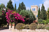 Bet Jimal Monastery & The Olive Grove