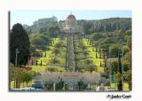The Bahai Shrine & Gardens