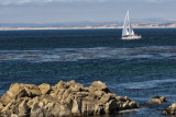 Pacific Grove at Monterey Peninsula