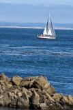 Pacific Grove_07.jpg