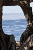Pacific Grove_12.jpg