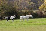 Lancaster county_044.jpg