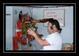 Monster lobster