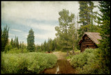Abandoned cabin from the mining days