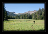 Meadow on the way to Republic Pass