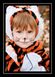 Norah the Tiger