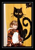 Norah spots a black cat