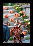 Admiring the pumpkins