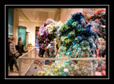 Coral reef made out of yarn