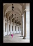 Norah amidst the columns