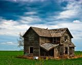 Concordia Farmhouse with Buzzard