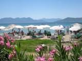 721 beach between Aegina and Perdika.jpg