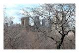 NY 2006 - 1254.jpg
