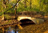 The Old Rustic Bridge