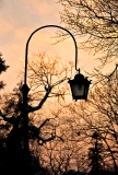 Lantern In Sunset