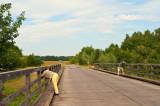 Photographers On The Bridge