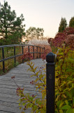 Bridge In The Gardens