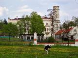 Palace In Stara Wies