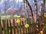 Autumn Fenced In