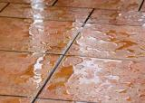 Water - In The Rain