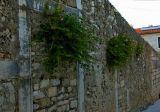 Street Wall