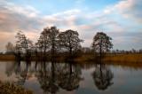 Ponds In Lomna
