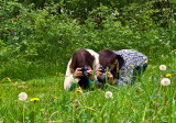 Young Photographers In Action