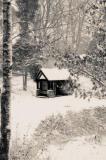 Winter Wonderland - Williamsons Park, Lancaster
