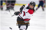 VE1101154-0008-hockey AA.jpg