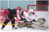 VE1101154-0091-hockey AA.jpg