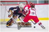 VE1101154-0097-hockey AA.jpg
