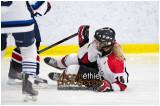 VE1101154-0111-hockey AA.jpg