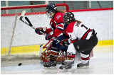 VE1101154-0163-hockey AA.jpg