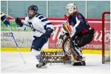VE1101154-0210-hockey AA.jpg